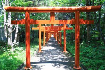 札幌伏見稲荷神社 鳥居の参道