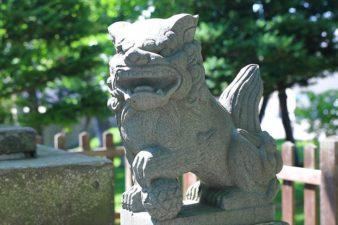 札幌神社 狛犬様