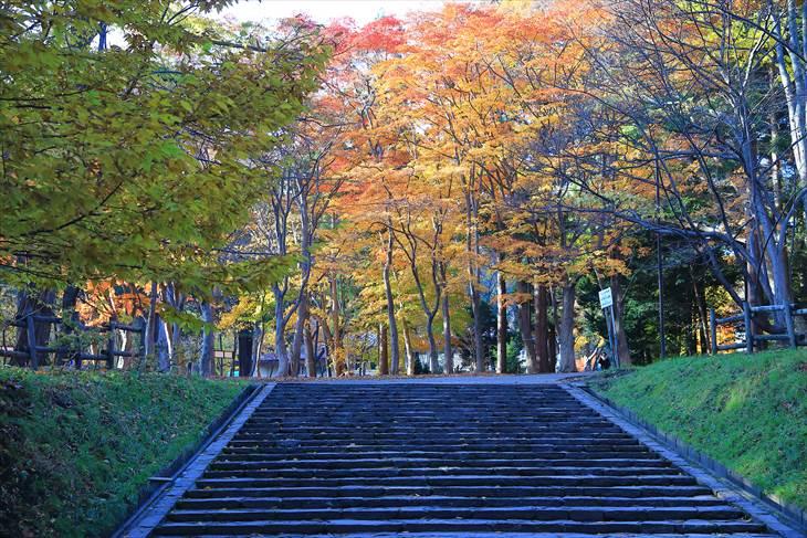 北海道神宮の秋