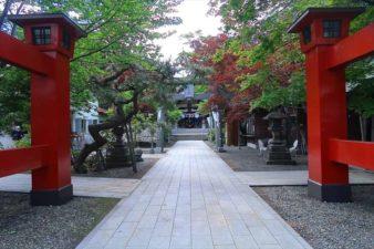 弥彦神社 参道