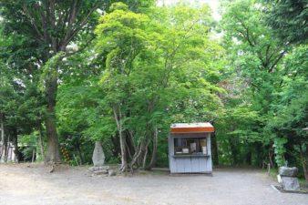 円山西町神社 境内