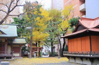 札幌三吉神社 秋