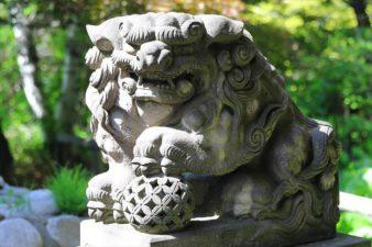 菜洗神社 狛犬様