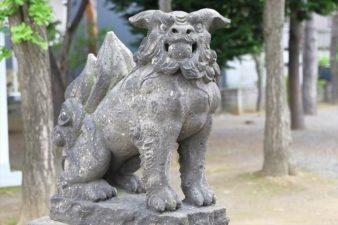 苗穂神社 狛犬様