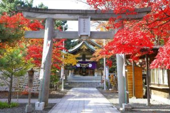 弥彦神社 第2鳥居と紅葉