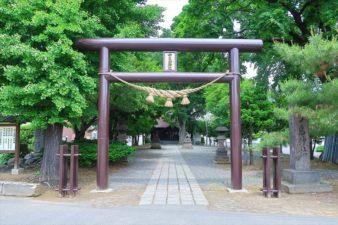 中の島神社 入口と鳥居