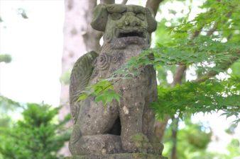 西野神社 狛犬様