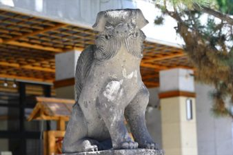 白石神社 狛犬様