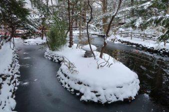 白石神社 池