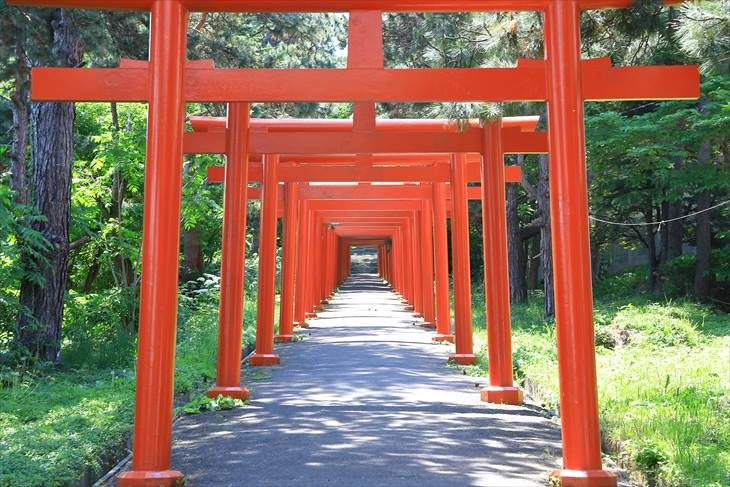 札幌伏見稲荷神社 鳥居と参道