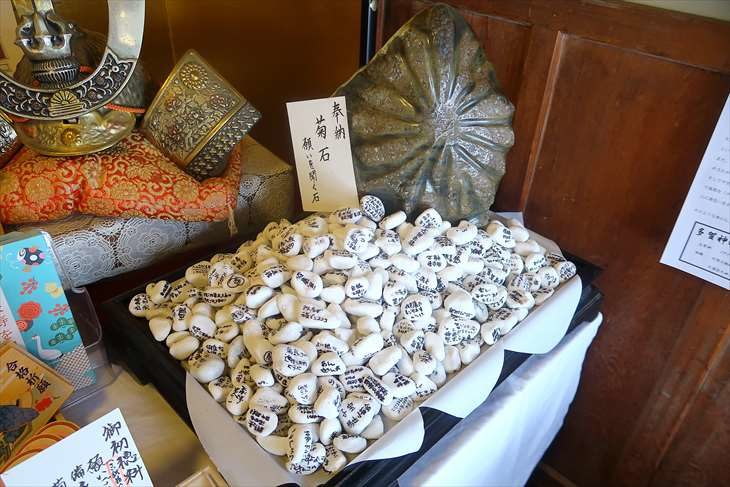 多賀神社 菊石