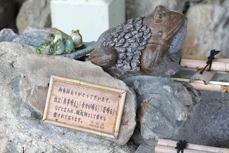 星置神社 手水舎の撫で蛙