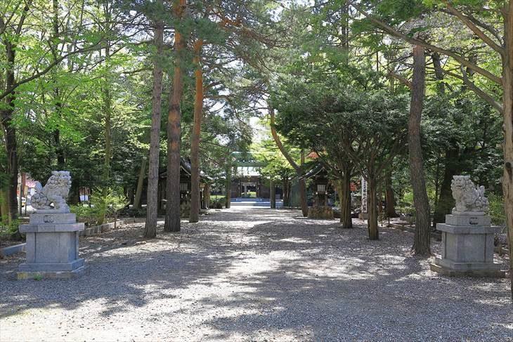 琴似神社 参道と狛犬様