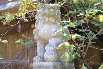 琴似神社 狛犬様