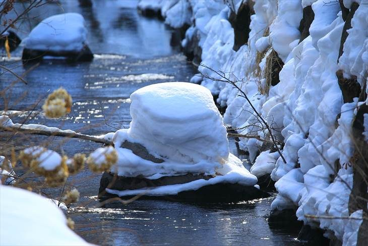 中島公園 冬