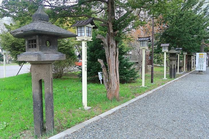 新琴似神社 参道の石灯籠
