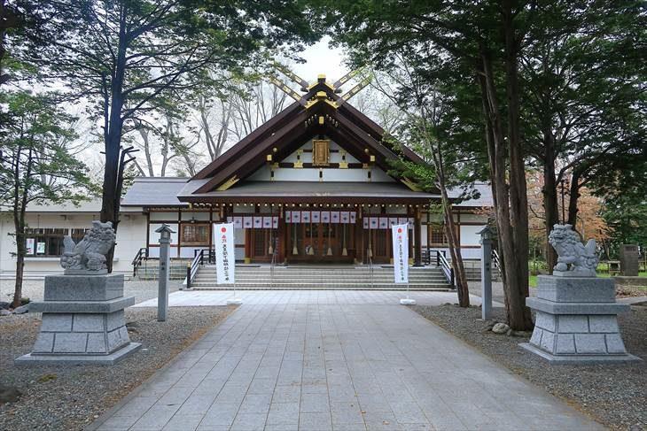 新琴似神社 社殿と狛犬様