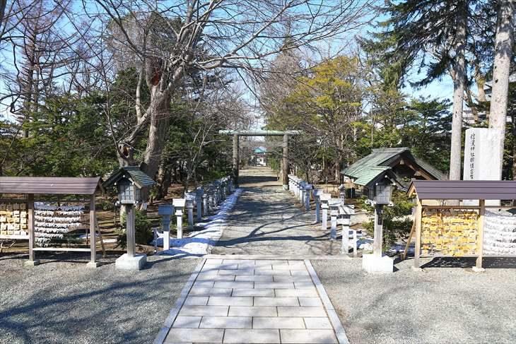 信濃神社 参道