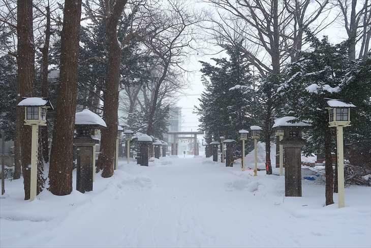 新琴似神社 参道 冬