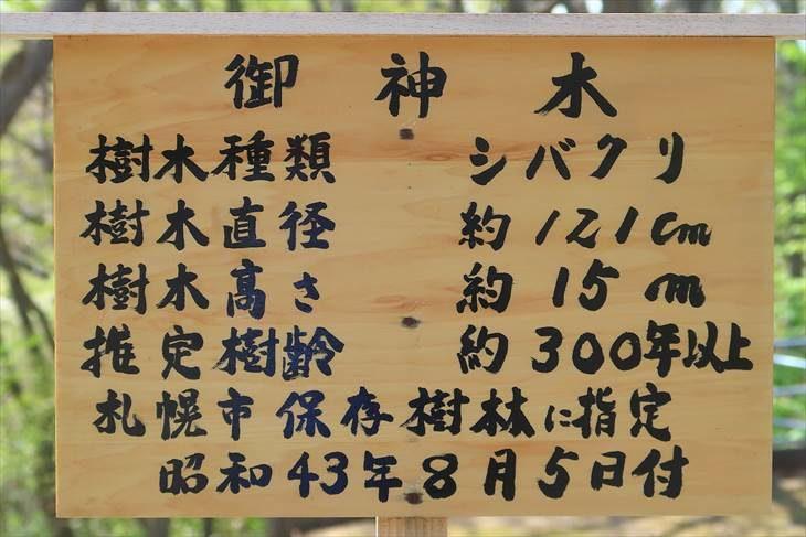 相馬神社 御神木の説明書き