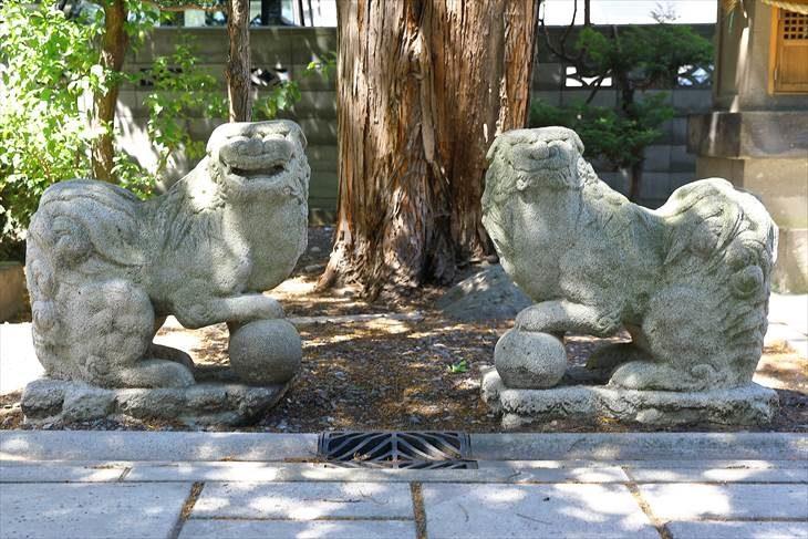 札幌水天宮 狛犬様