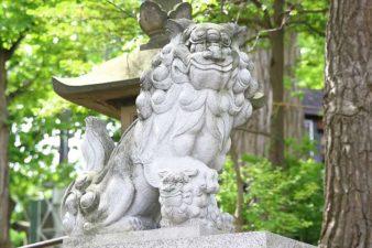 手稲神社 狛犬様