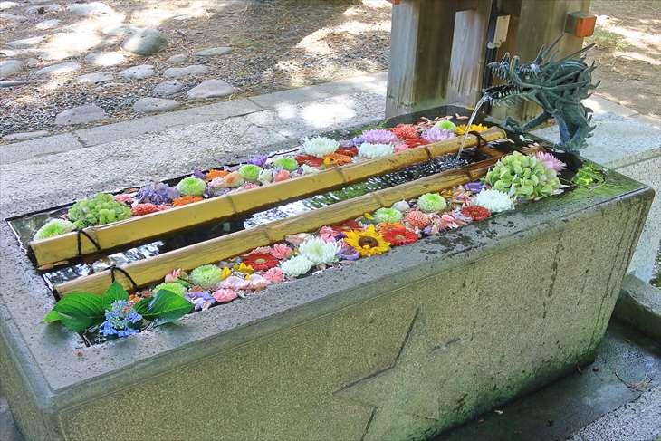 札幌護国神社 花手水