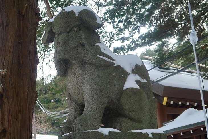 元旦の北海道神宮の狛犬様