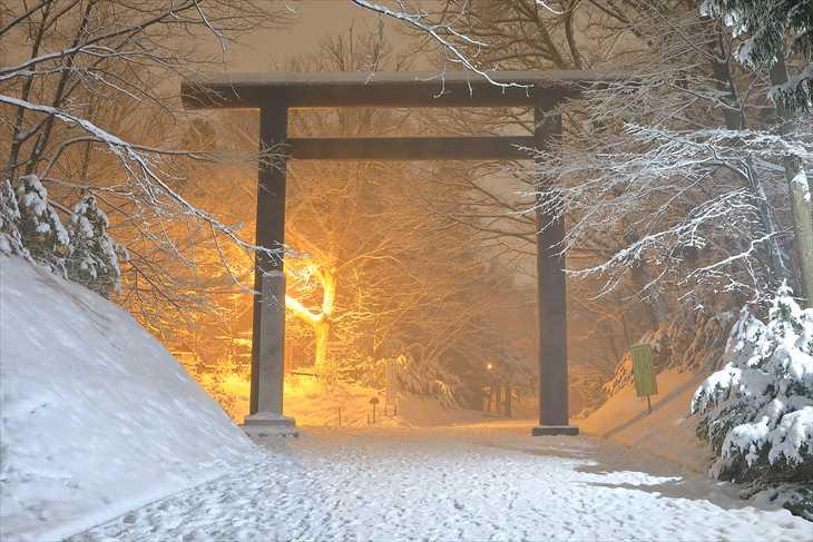 冬の夜の北海道神宮 公園口鳥居
