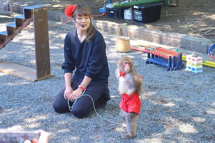 札幌まつり・北海道神宮例祭の猿回し