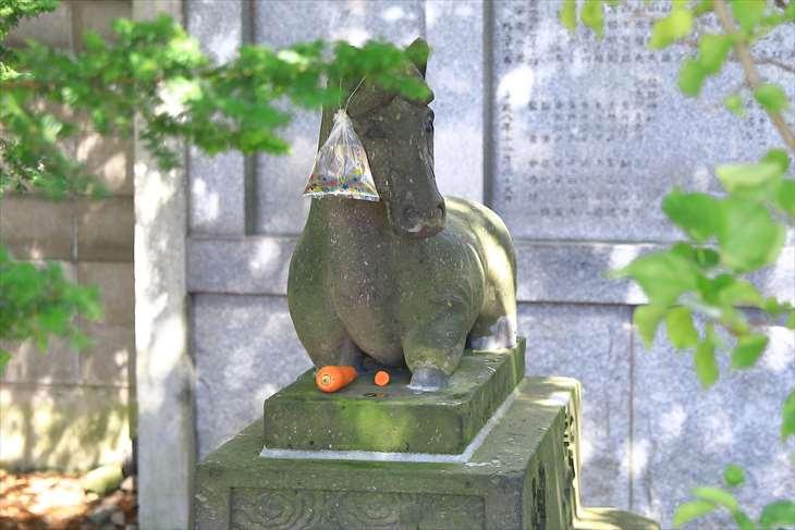 篠路神社参道奥の馬の石像