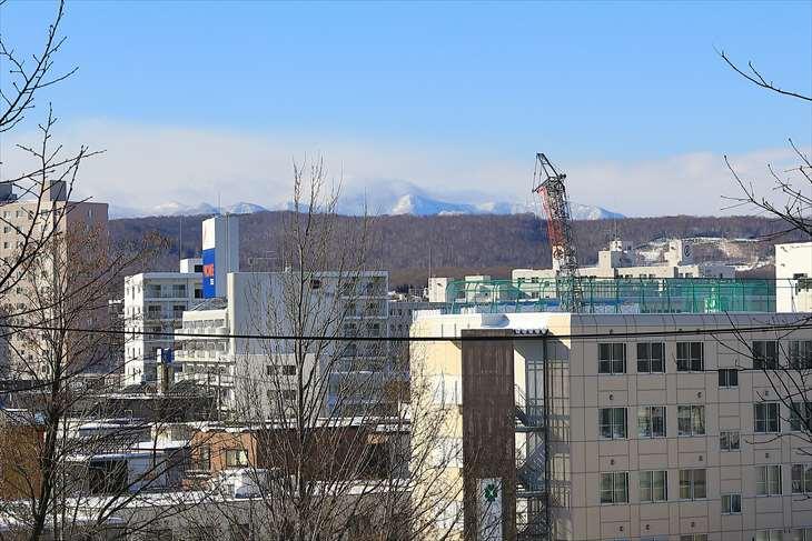 冬の厚別神社 鳥居の中から見た風景