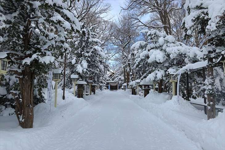 新琴似神社 冬の参道
